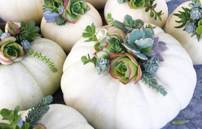 Love it List: fall edition