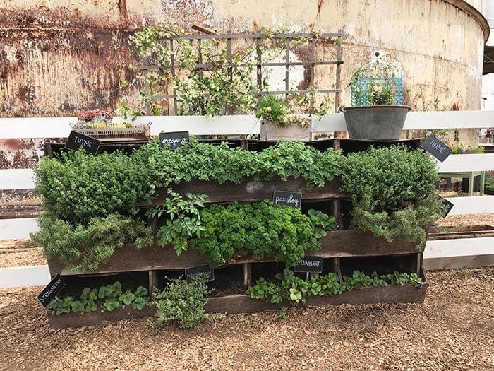 Garden Ideas From Magnolia Silos The Harper House