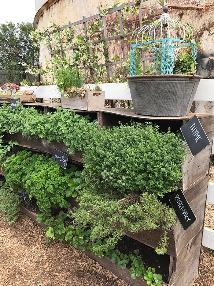 Our trip to the Magnolia Silos. Sharing cute outdoor gardening ideas I found at Magnolia Market. Raised beds, vegetable gardening ideas, outdoor flower garden, herb gardening, Fixer Upper