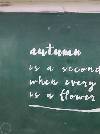 Easy hand lettering for the perfect autumn chalkboard.